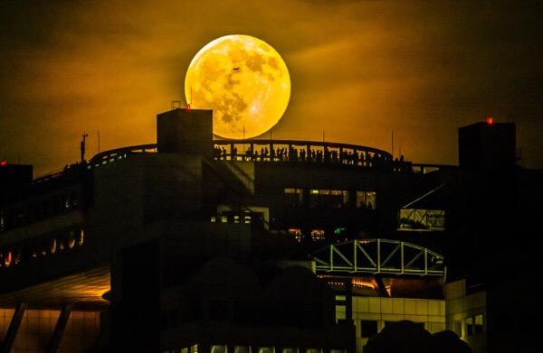 スーパームーンとは別で大きく見える月を知ってるぜ!【11月14日:スーパームーン】