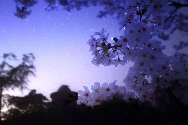 星がキレイに見える場所とそこを最高な星空にするポイントを説明しよう【初心者向け】