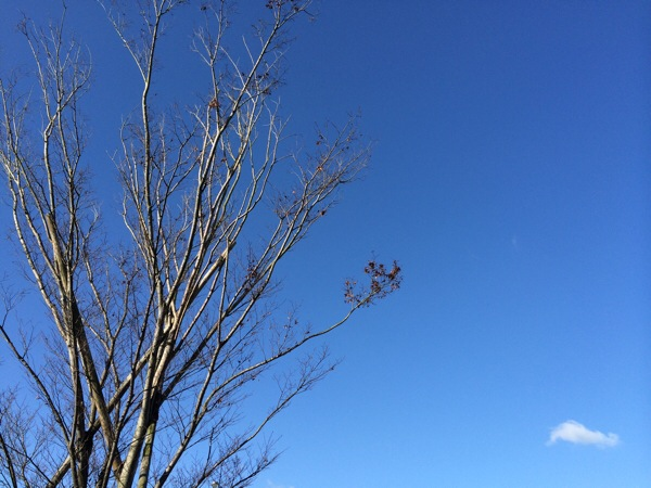 空の青さが変わるワケ