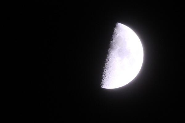 【9月2日 上弦の月】中秋の名月まえの半月を愛でよう #ウチソラ