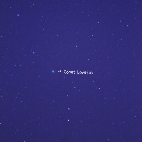 ラブジョイ彗星の見つけ方【写真も撮ったよ】