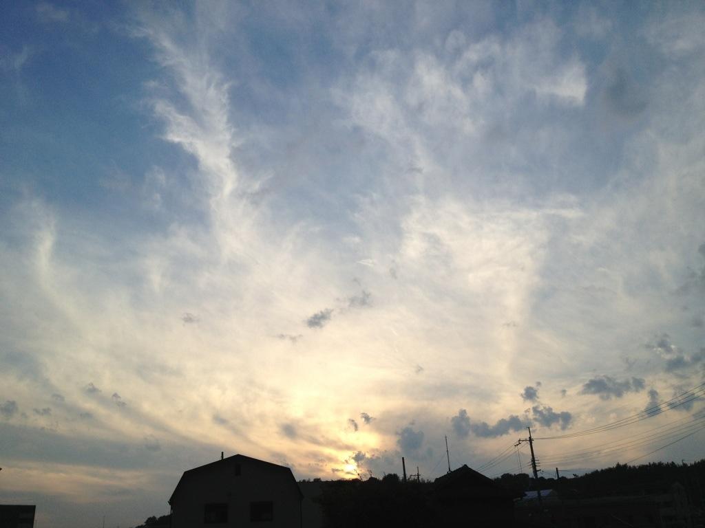 20121107-072756.jpg