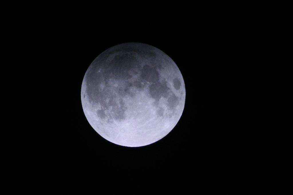 20121129-175038.jpg