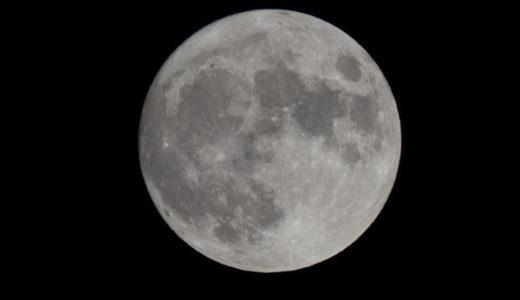 月を愛でる日本人と、月を忌む日本人【日本人はいつから月が好きなの?】