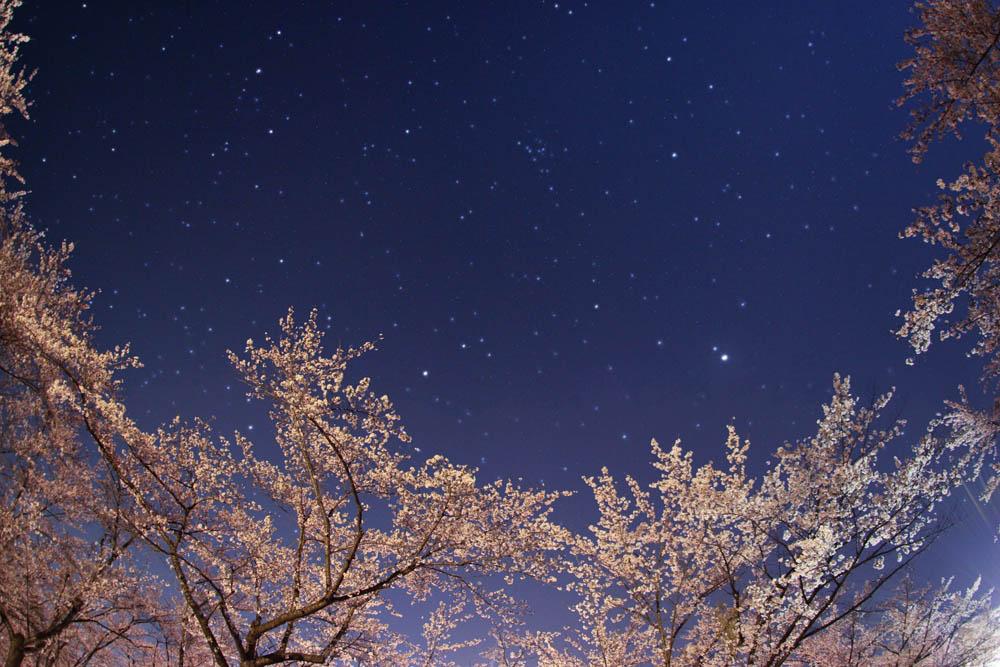 夜空と星空その2