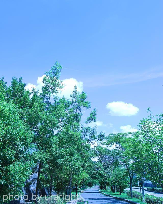空は人の脳に酸素を送ってくれる話