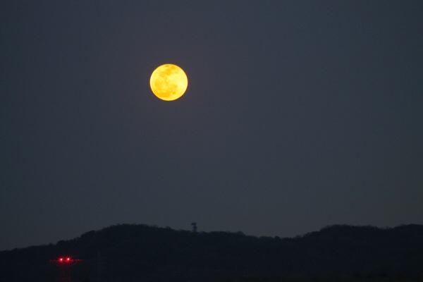 関東での部分月食の様子と、関西のお月様の写真たち
