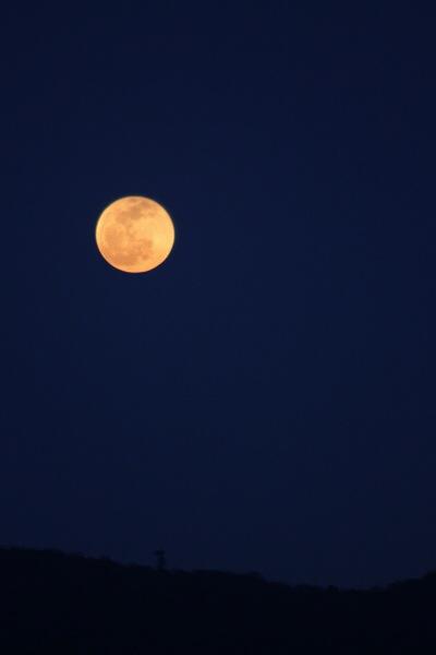 月のリズムで生きた昔【旧暦のざっくり知識】