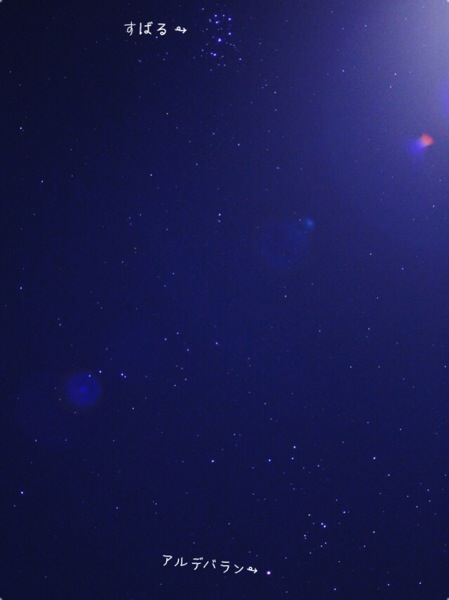 冬の星座がお目見えしたので写真撮りました!